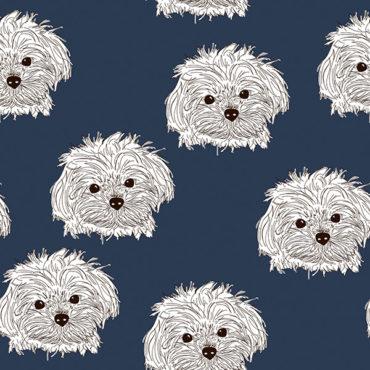 Sweat en jersey de coton bio tricoté avec chiens