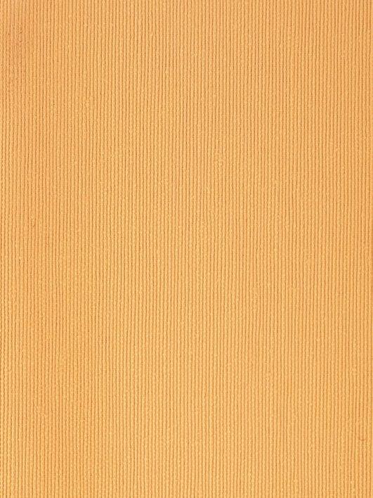 Tela de tapizar naranja claro