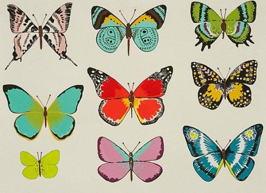 Estampado de mariposas multicolor